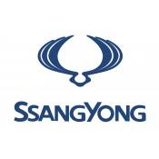 Ssangyong (6)
