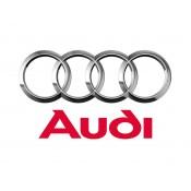 Audi (136)