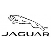 Jaguar (15)